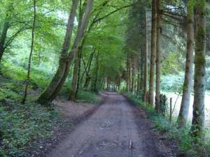 7208 - Vencimont - Chemin de la Houille